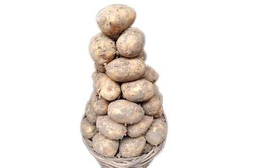 1594470068-h-250-Irish-Potato-Small-Basket.jpg