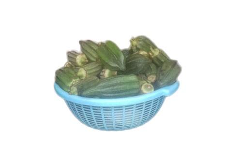 1595603044-h-250-Okra-Small-Basket.jpg