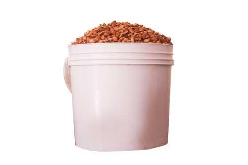 Olotu beans
