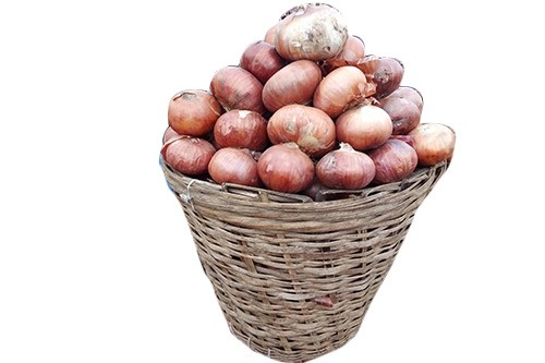 1599059920-h-250-dry-onion-basket.jpg