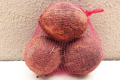 1599230802-h-250-coconut-large-3.jpg