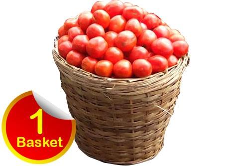 1599662296-h-250-tomato-jos-one-basket.jpg