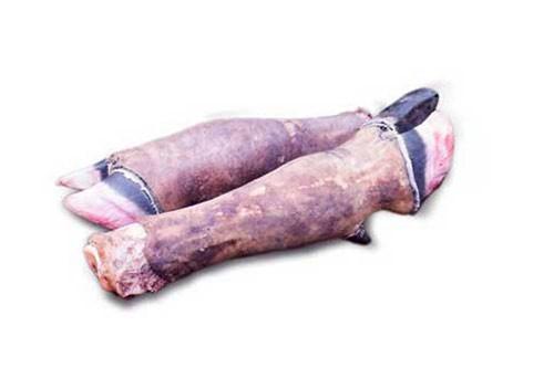 Brokoto - Cow leg